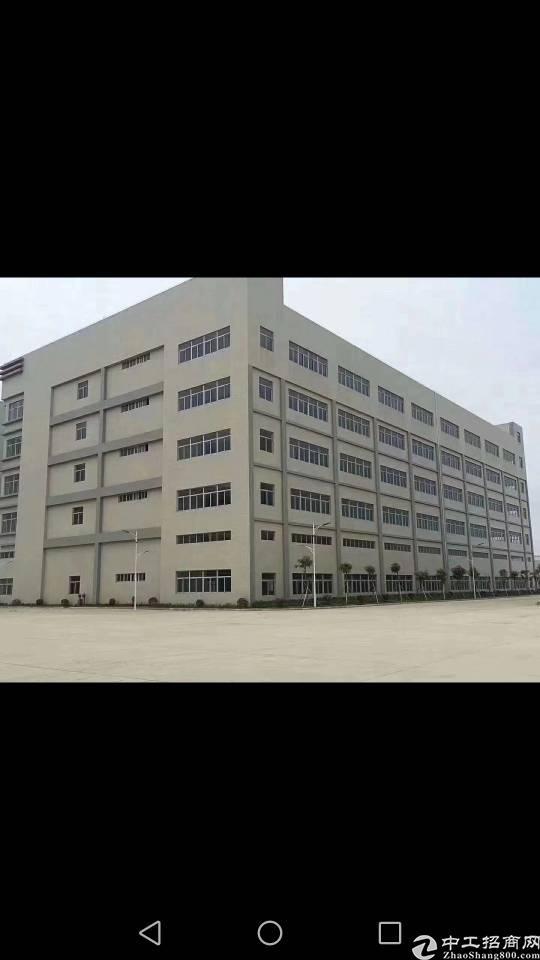 仲恺陈江4千平方标准厂房卖960万
