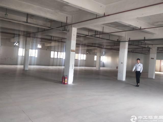 沙井黄埔大道107国道二楼实际面积1000平方出租