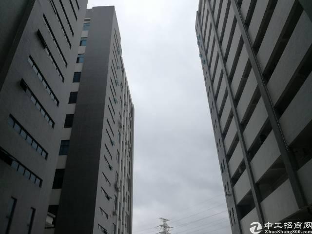 光明区高新园区楼上2750平方出租