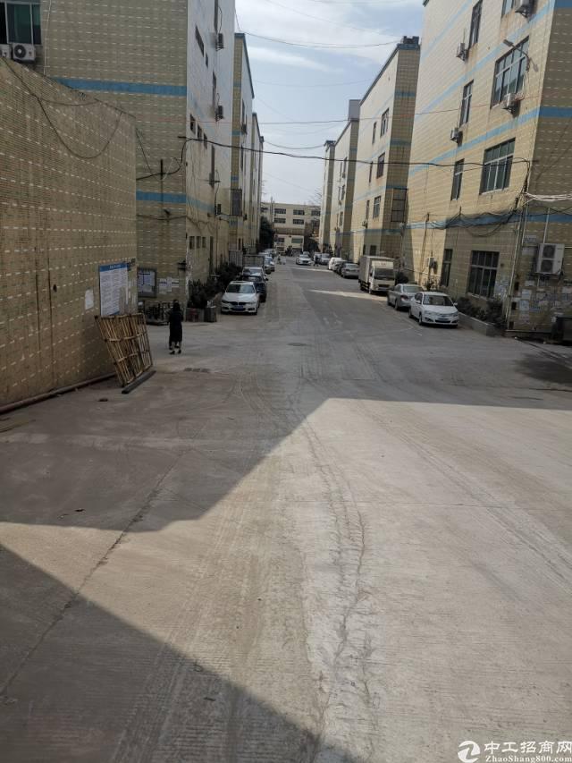 龙华大型园区精品钢构最小可分350