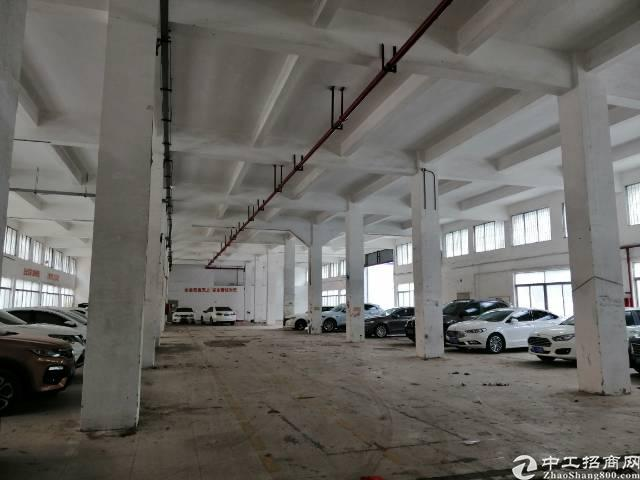 布吉一楼单层2500平方招租高度7米