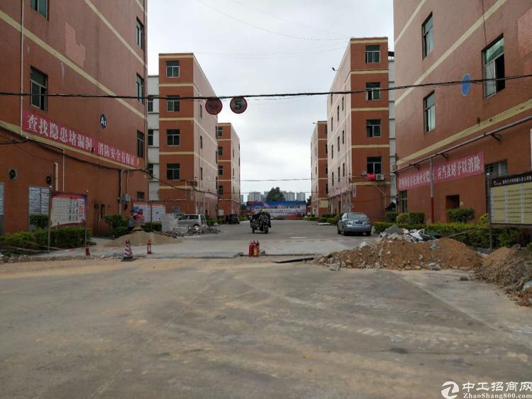 龙岗厂房出租爱南路边大型工业园86900平方出租、200平起