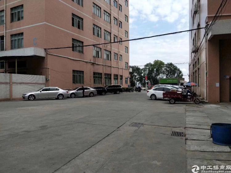 西乡鹤洲红本独栋厂房17000平