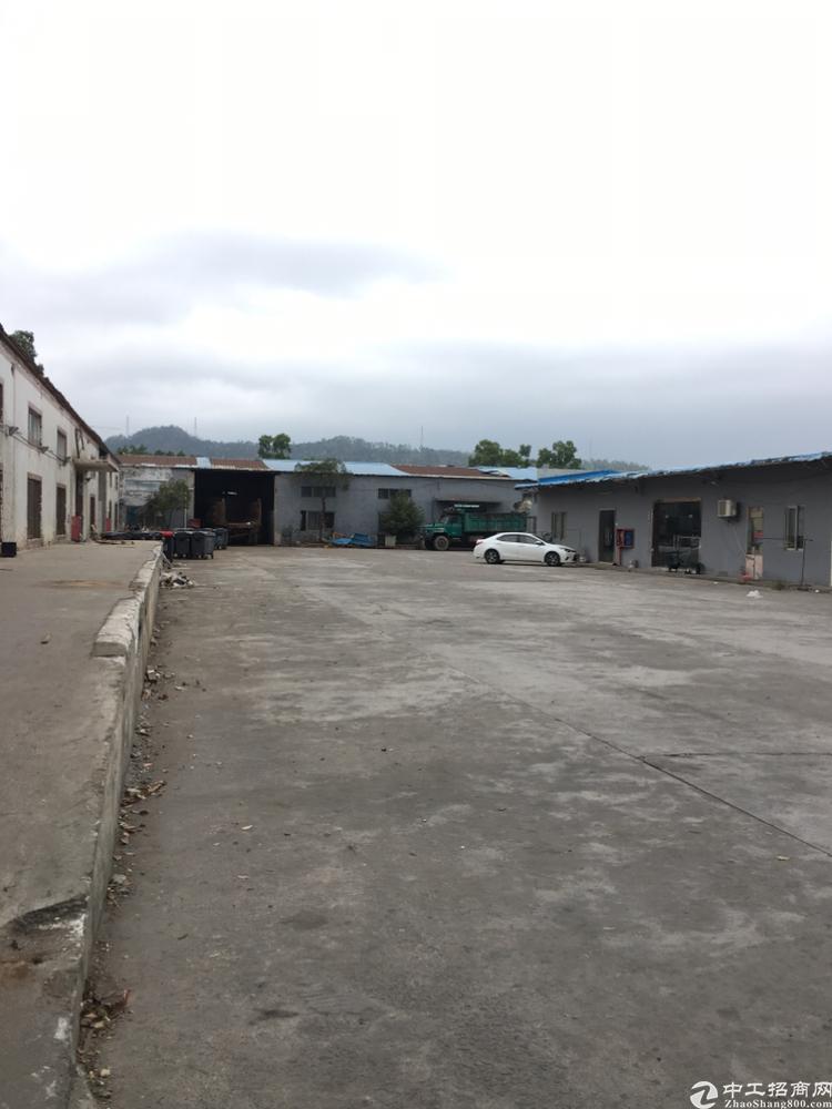 坪山汤坑工业区新出1600平米钢构仓库出租,可分租