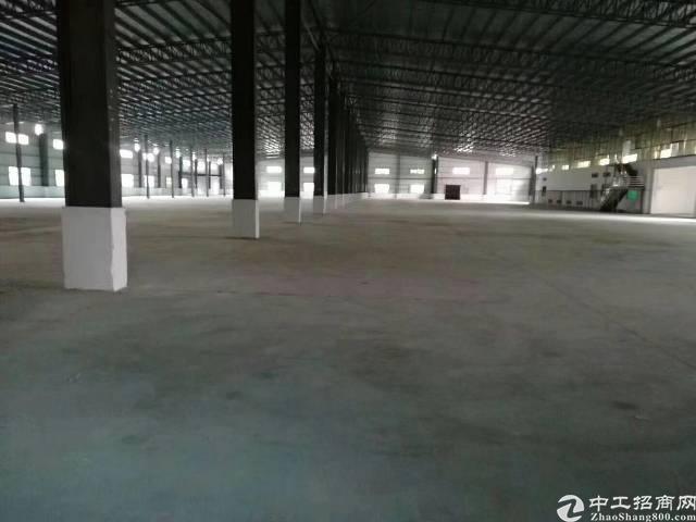 西乡鹤洲洲石路边上新出独门独院厂房16500平米出租可分租