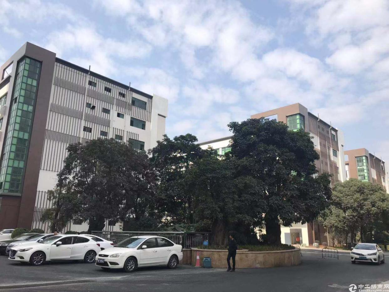 龙华大浪行政中心附近新出高新园区20000平