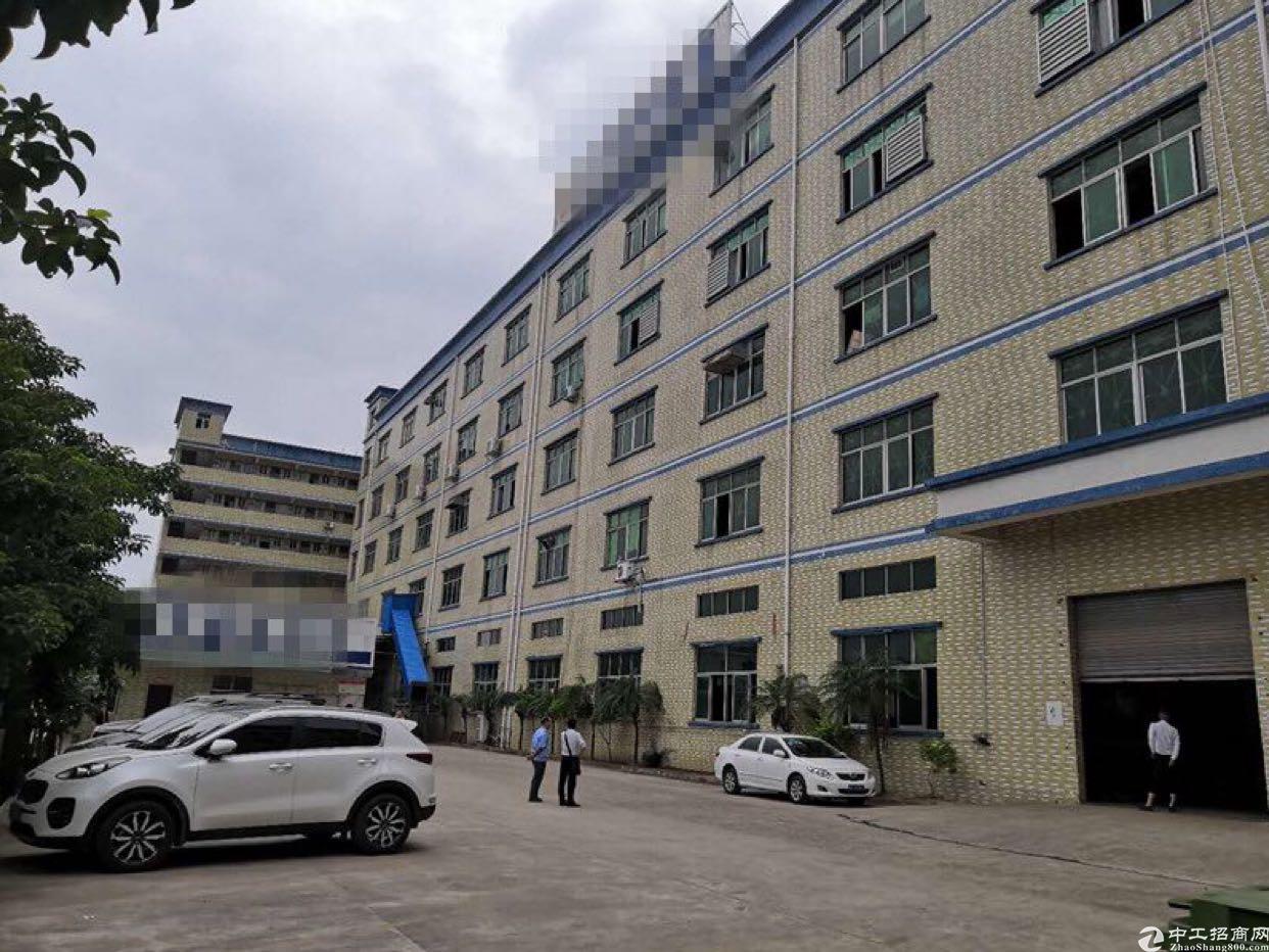 原房东独院厂房22000平方米出售