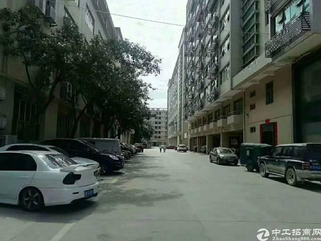 福永塘尾原房东一楼1200平方