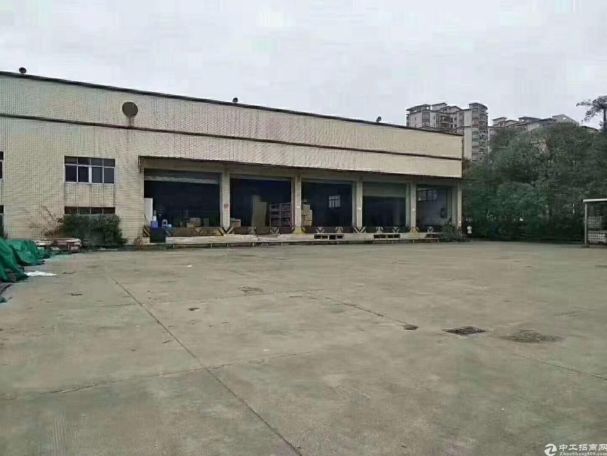福永桥头独院钢构10000平方招租