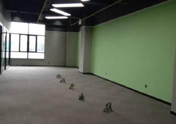 平湖华南城旁10万平米精装写字楼出租100平米起图片3