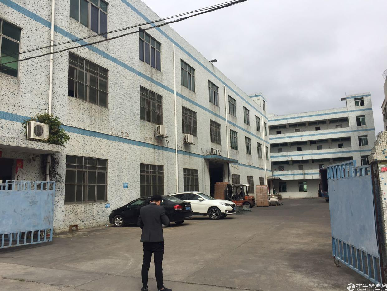 龙西原房东厂房一楼1500平方