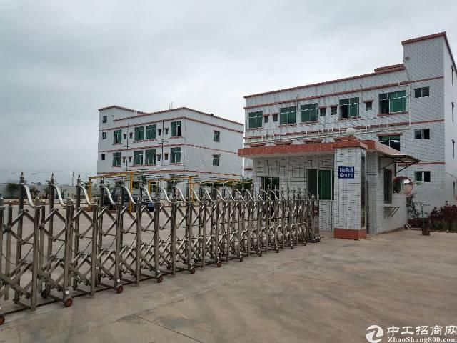博罗县龙华镇单一层15000平米出售