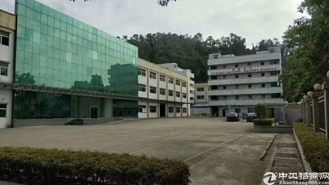 东莞新出村委独院厂房出租,高度7.8米带牛角