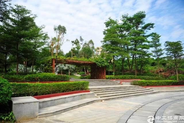 广州黄埔开发区森林里的四合院写字楼