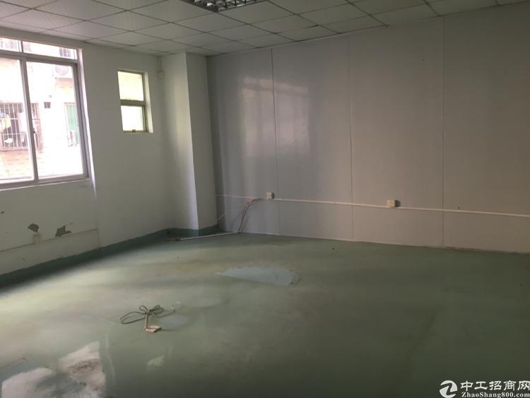油松新出整层办公厂房,形象非常好,大小可分租