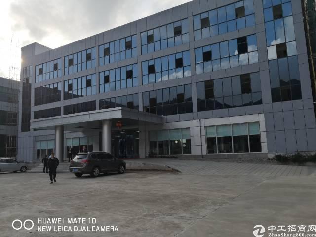 横岗安良全新高新园区3215平厂房招租