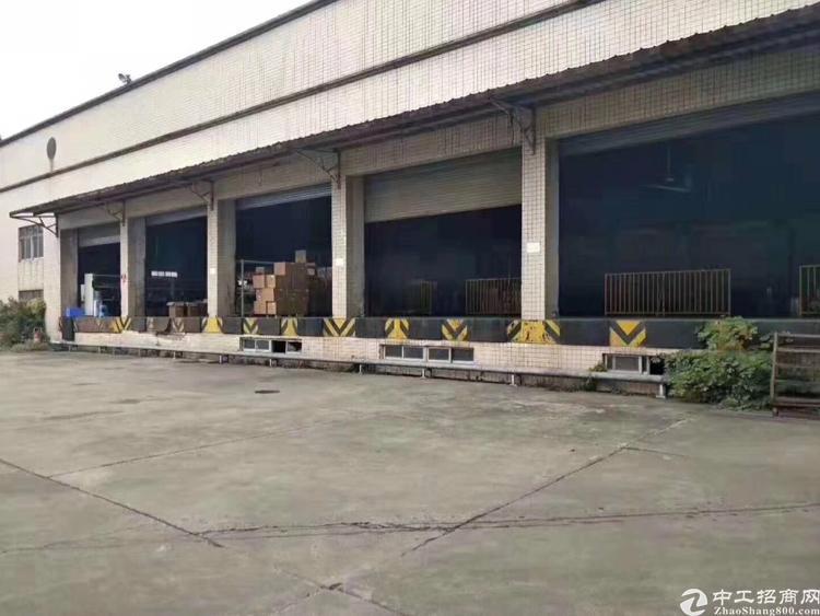 光明双高速出口新出带卸货平台滴水8米5500平钢结构厂房招租