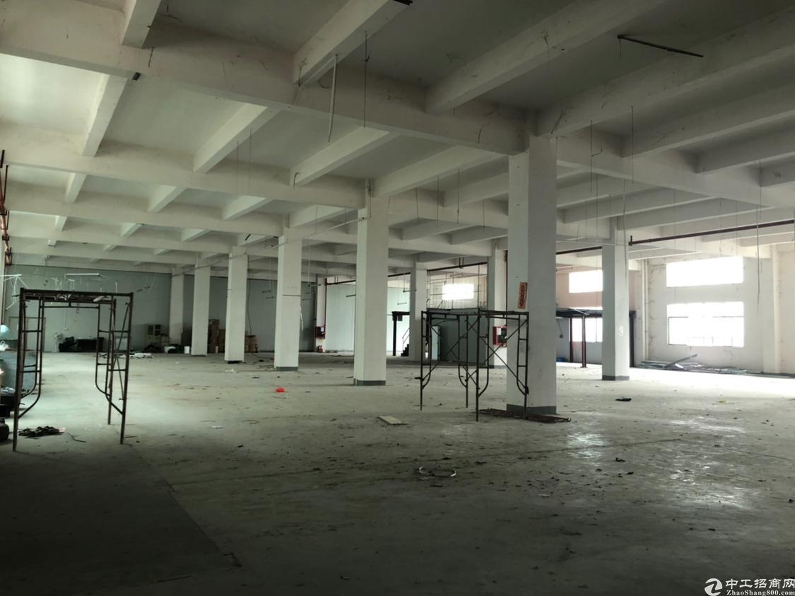 观澜新出原房东一楼2100平高6米出租