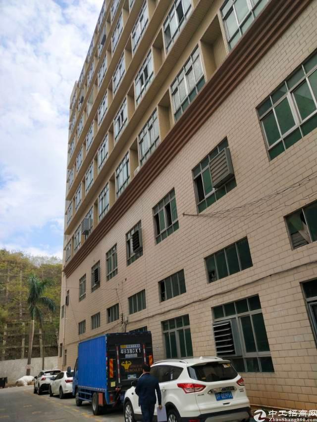 龙东楼上带电梯整层1100平米厂房13块出租