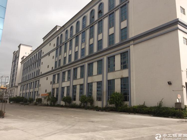 松岗黄金地段大路边原房东高大上红本厂房10平方可分栋出租