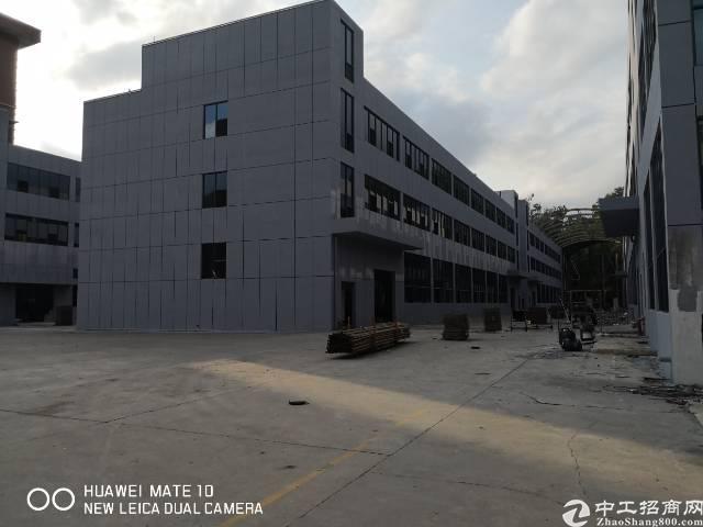 横岗安良全新高新园区80000平招租-图2