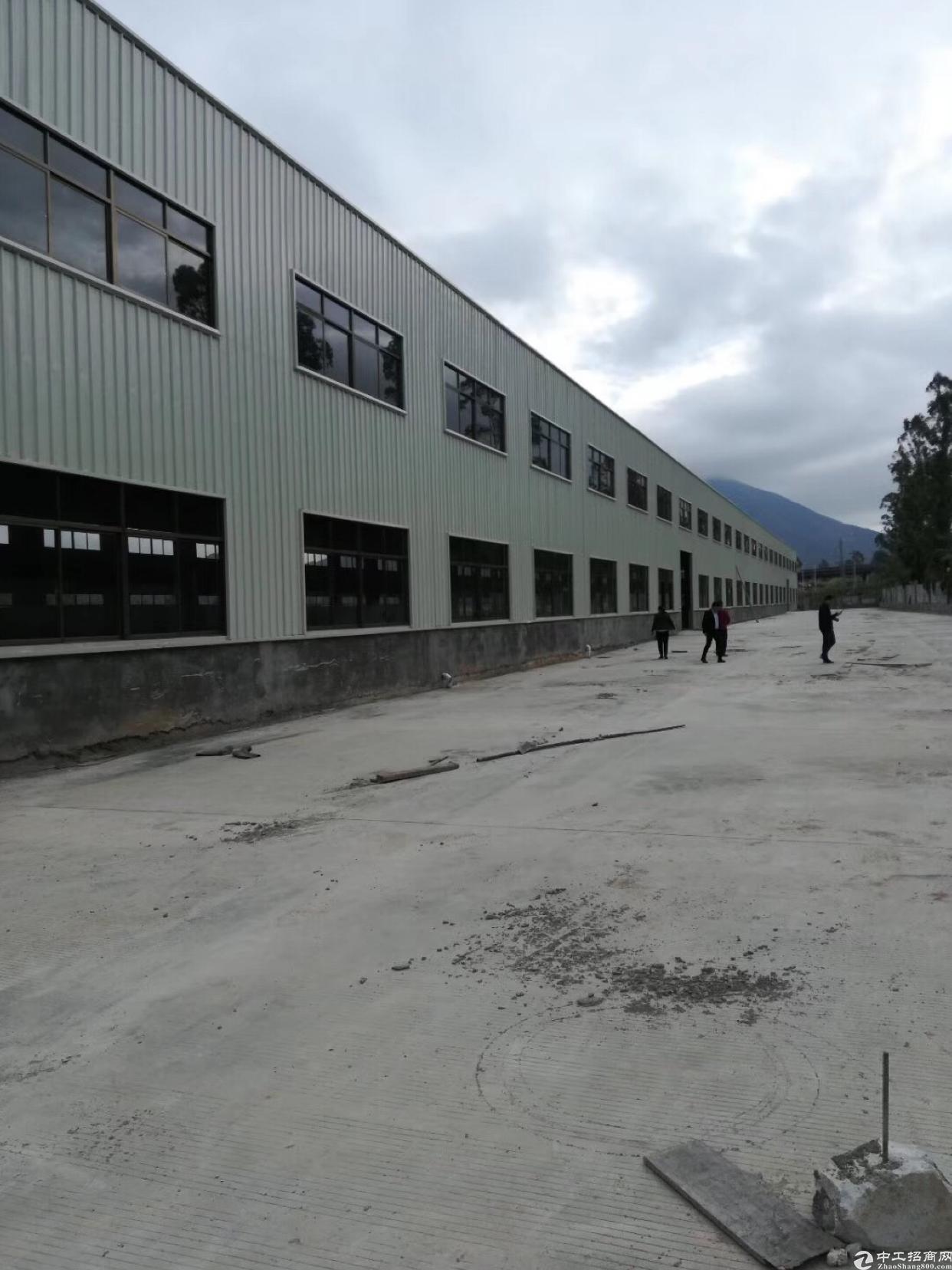桥西新出花园式钢结构厂房火爆招租
