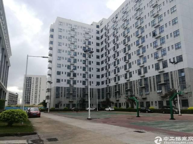 平湖华南城旁原房东宿舍19000平米适合改公寓