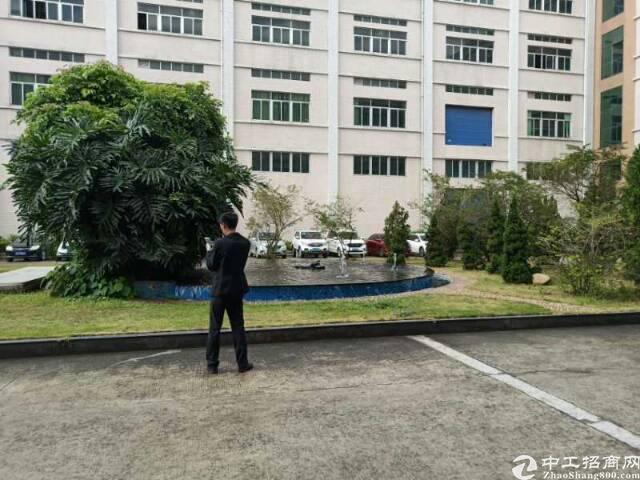 平湖华南城一楼1500平米急租可分租