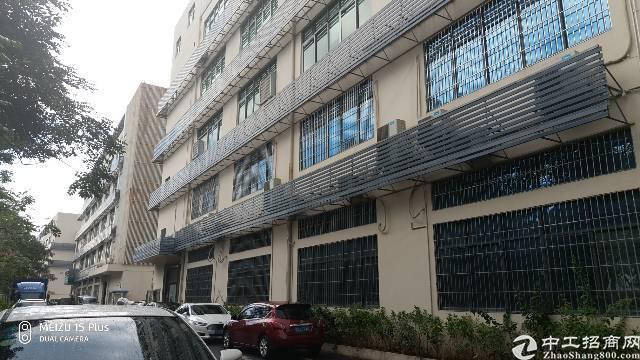 西丽白芒关口整层1200平米研发办公楼带精装修出租
