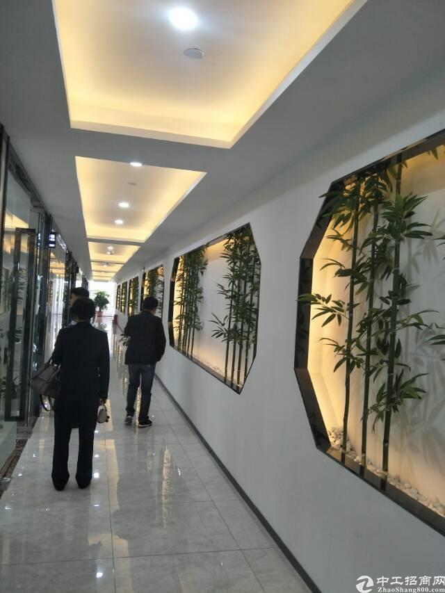 西乡兴东超靓写字楼50平方起租租金69元