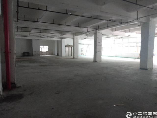 坂田上雪新出原房东厂房900平方米实用率9成