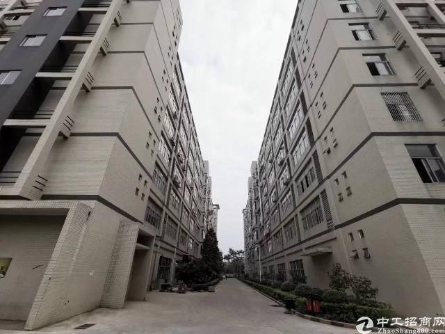 惠阳新圩占地9000㎡国有双证独院厂房出售