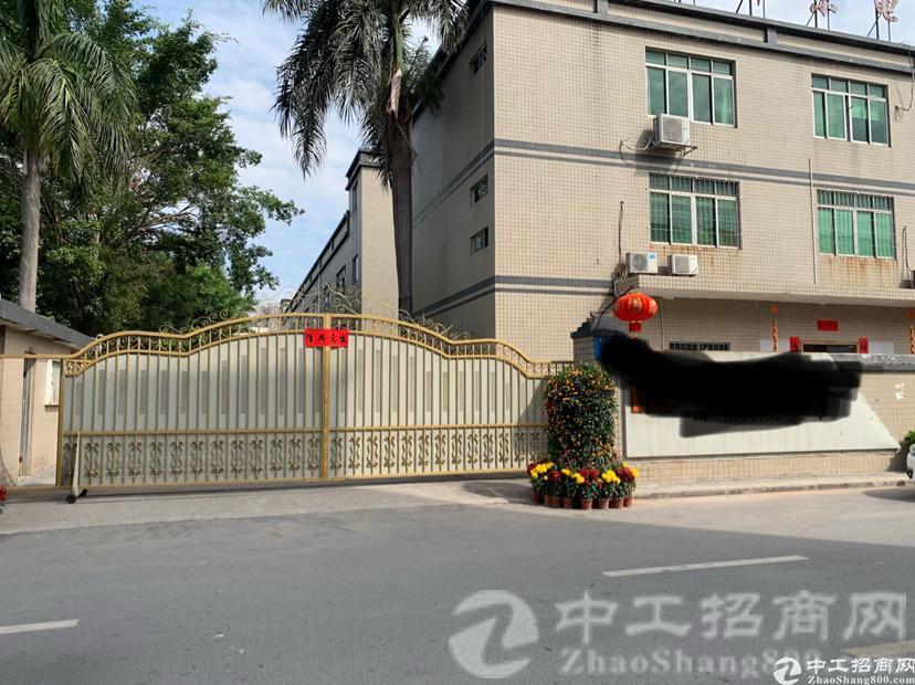 观澜原房东花园厂房招租总面积4100平