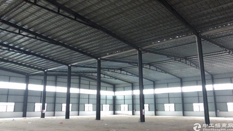 全新钢结构原房东出租