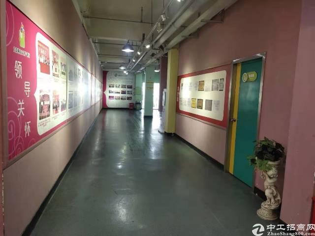 横岗地铁站500米新出一楼办公室146平