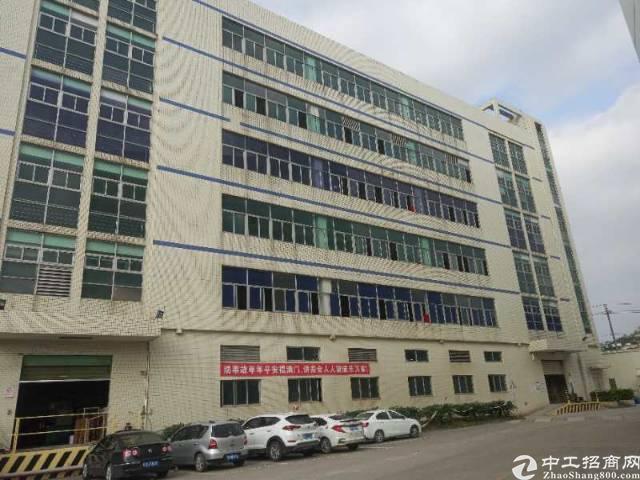 布吉花园式厂房11000平出租(一层2200平)