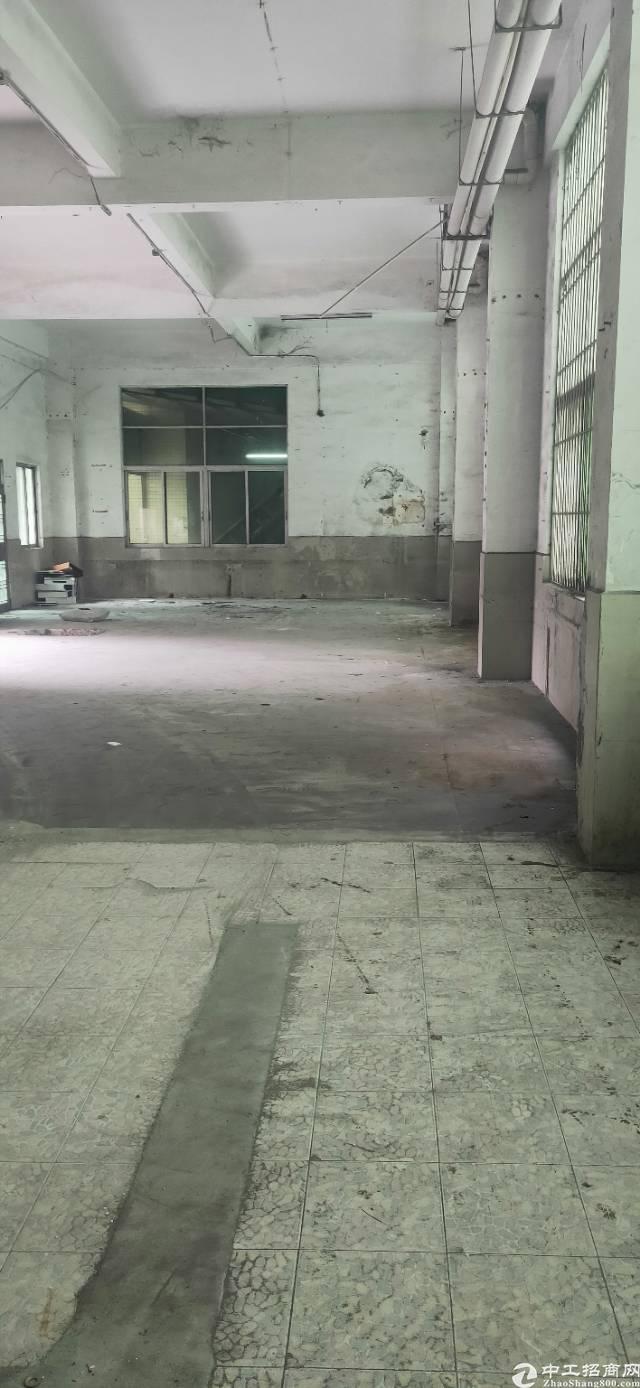平湖鹅公岭一楼254平仓库厂房出租