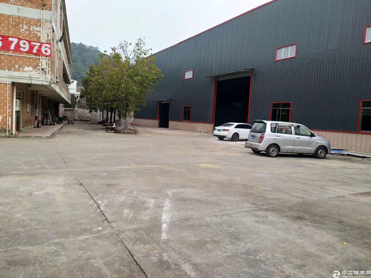 芦洲新出花园式钢结构厂房火爆招租