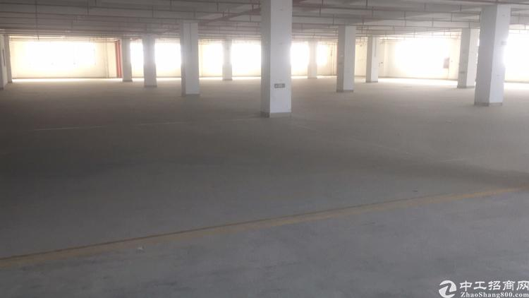 石岩北环大工业区2楼整层3400平红本厂房出租