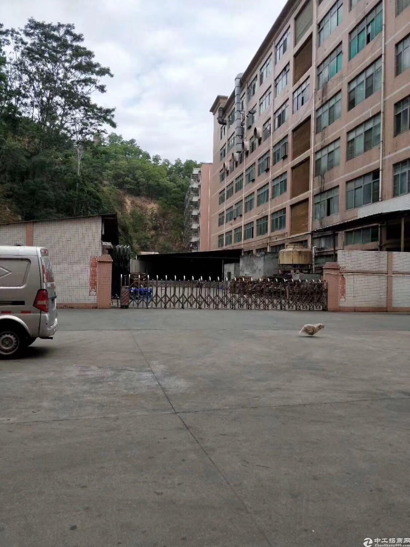 西乡鹤洲独门独院17000平大小可分租不限制行业