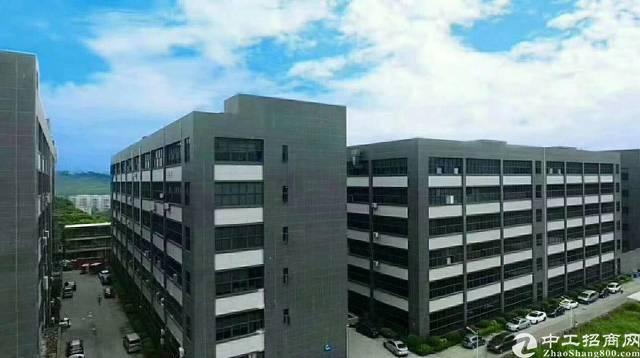 西乡宝安大道黄田工业区楼上精装修2500平,可分租,无转让费
