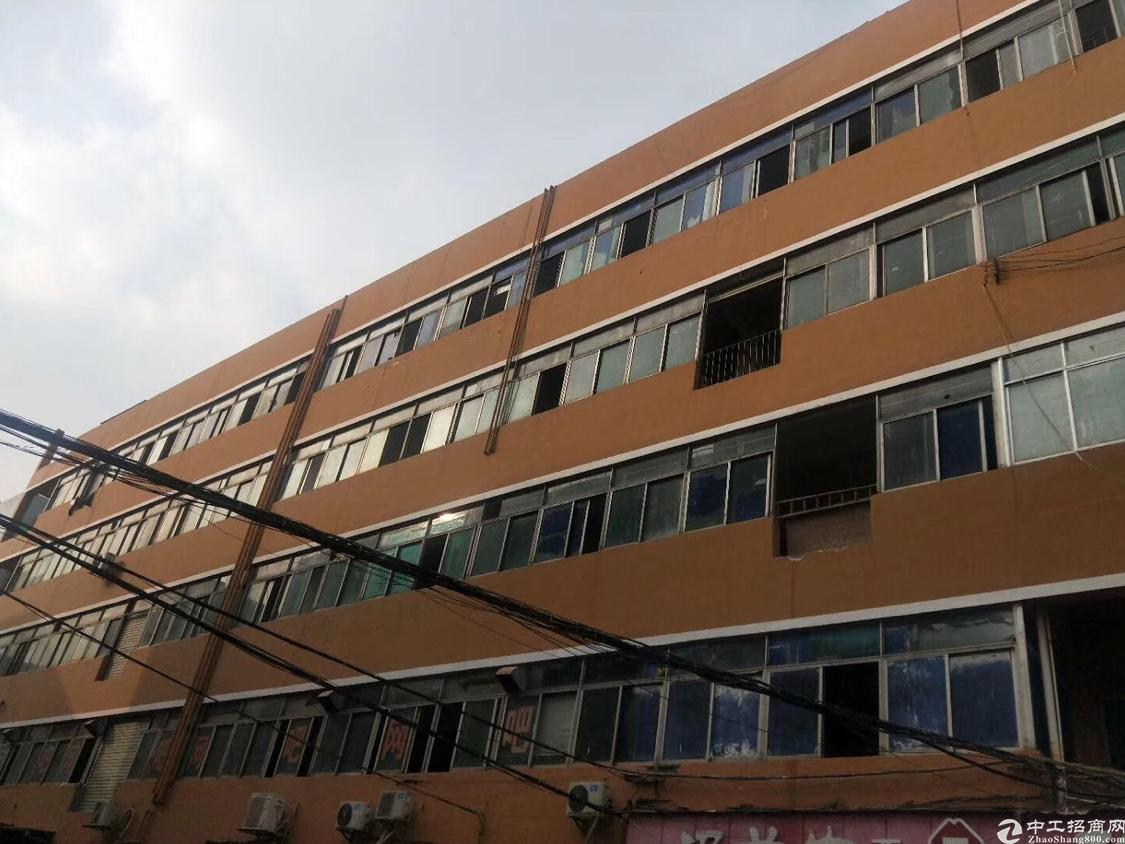 福永白石厦工业厂房300平招租