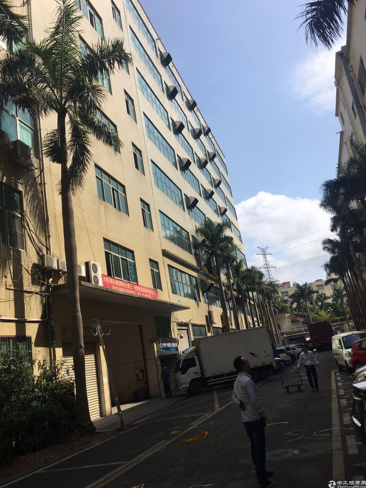 布吉丹竹头地铁站附近新出4-7层9600平方大小分租