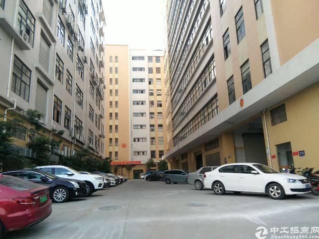 公明南光出口大型园区新空出楼上整层3500平豪装厂房出租