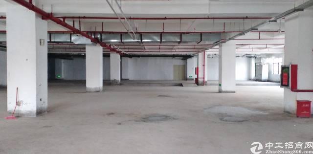 平湖街道华南城仓库5000平米出租使用率高95%
