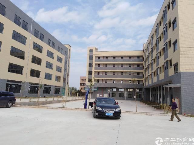 水口全新独栋1-5层13000平米厂房出租