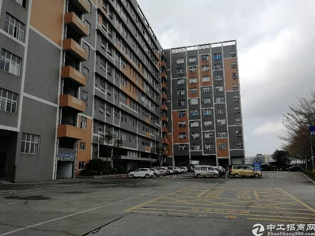 沙井后亭地铁口新出7楼1153平方,租金24元每平方,简装修