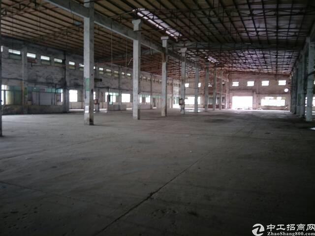坪地坪西钢构厂房独院8000平优惠招商