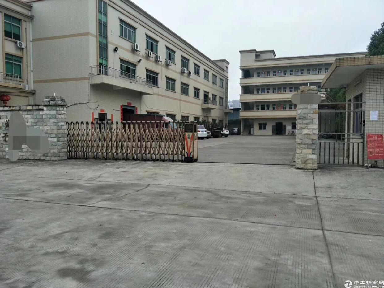 沙头一楼三百平精装修厂房招租