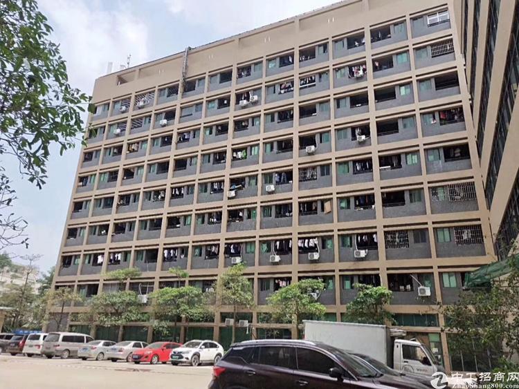 石岩龙大高速出口附近新出楼上1350平带精装修厂房出租
